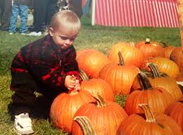 Oklahoma Pumpkin Patches 2015 by Pumpkin Patch I As A Parent