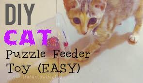 DIY Cat Puzzle Feeder Toy Blast from the Past The Artsy Craftsy