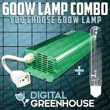600 watt digital ballast bulb combo hydroponic hps mh grow