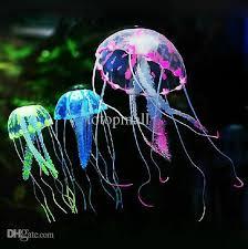 best 25 aquarium l ideas on betta aquarium vase
