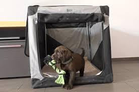 hunde welpen schnell an hundebox transportbox gewöhnen