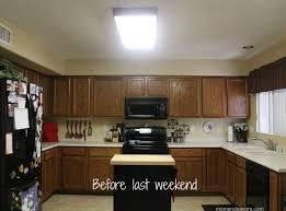 2x4 fluorescent light replacement lens lowes fluorescent light