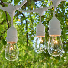 String Lights For Patio by Outdoor Patio String Lights Commercial