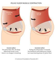 men working your pelvic floor pelvic floor first