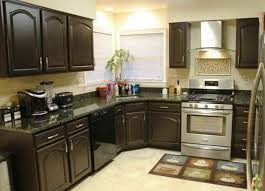 Cheap Kitchen Design Ideas 18 Pictures Small Budget Model Decorating