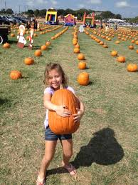 Flower Mound Pumpkin Patch Flower Mound Tx by Pumpkin Village Pumpkin Patch Closed Local Flavor 4908 Cross