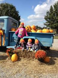 Pumpkin Patch Nashville Area by Cedarwood Farms Home Of The Pumpkin Patch Tennessee Haunted Houses