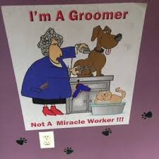 professional pet grooming by sabrina pet groomers 138 red bank