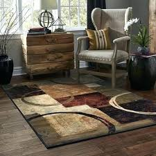 7 X 10 Rug Area S Outdoor Rugs