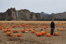 Dd Pumpkin Patch Terrebonne Oregon by Pumpkin Patches In Central Oregon Hubpages