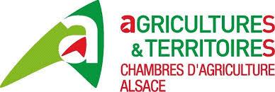 offre emploi chambre agriculture fédération interprofessionnelle forêt bois alsacienne fibois alsace