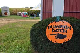 Chesterfield Pumpkin Patch 2015 by Jersey Fresh 2017 Corn Mazes Hay Rides And Fall Fun At New Jersey