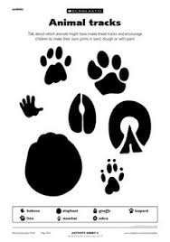 Use Animal Tracks In A Line For Students To Stand On While Lining Up
