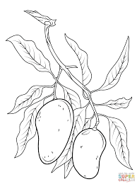 Click The Mango Branch Coloring Pages