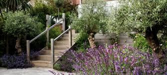 Brighton Garden mike harvey gardens