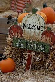 Pumpkin Patch Western Massachusetts by The 10 Best Pumpkin Patches In South Carolina In 2016