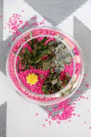 Petco Flower Ball Aquarium Decor by Best 25 Aquarium Rocks Ideas On Pinterest Fish Tank Amazing
