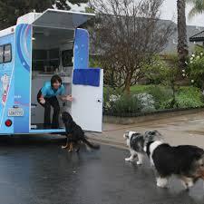 mobile cat grooming san diego mobile grooming pet grooming la jolla mobile