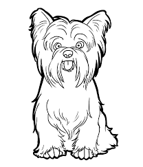 Coloring Download Yorkshire Terrier Pages Candybeelineartsdeviantart On Free Online