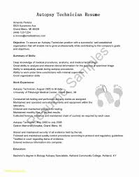 10 Lab Assistant Resume Samples | Proposal Sample Top 8 Labatory Assistant Resume Samples Entry Leveledical Assistant Cover Letter Examples Example Research Resume Sample Writing Guide 20 Entrylevel Lab Technician Monstercom Zip Descgar Computer Eezemercecom 40 Luxury Photos Of Best Of 12 Civil Lab Technician Sample Pnillahelmersson 1415 Example Southbeachcafesfcom Biology How You Can Attend Grad