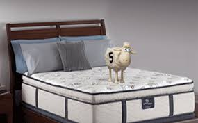 Serta Simmons Bedding by About Serta Simmons