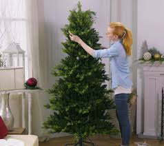 Qvc Christmas Tree Storage Bag by Bethlehem Lights Prelit Noble Spruce Tree With Multi Functions