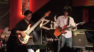 better days ahead pat metheny cover by skyline