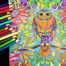 And Adult Coloring All Colored Pencil Art PencilsDrawing Pencils With Case For Artist SketchSecret Garden Book