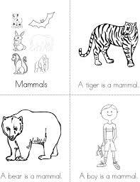 Mammals Mini Book