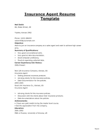 Insurance Resume Profile Examples
