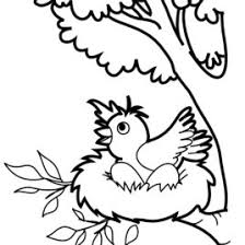 Bird Nest Coloring Pages Free Printable