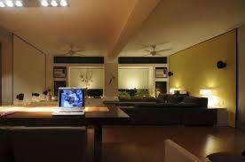 Safari Decor For Living Room by Beautiful Design Ideas Safari Decor For Living Room For Hall