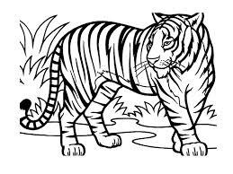 Coloring Page Wild Jungle Animals 30