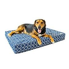 Trusty Pup Dog Bed by Top 6 Best Orthopedic Dog Bed Reviews For 2017
