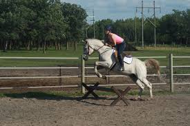Horse Jumping | The