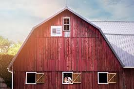 10 Impressive Indiana Barns For Your Wedding | WeddingDay Magazine Farm House 320 Acres Big Red Barn For Sale Fairfield The At Devas Haute Blue Grass Vrbo Fair 60 Decorating Design Of Best 25 Barns Ideas On Pinterest Barns Country And Indiana Bnsfarms Etc A In Water Color Places To Visit Nba Partners With Foundation For 2015 Conference I Lived A Dairy Farm When Was Girl Raised Calves 10 Michigan Wedding You Have See Weddingday Magazine