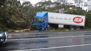 Truck Crashes On Princes Highway, Burrill Lake | Milton Ulladulla Times Images Truck Crashes Into Jacksonville Beach Lawyers Office Wjaxtv Fire Truck Through Cable Barrier After Tire Blows Out Kforcom Dump Rock Beside Trscanada Highway In Langford Driver Inattention At Root Of 3 Deadly Transport Opp Injured Box Kfc Pinellas Park Falls Garage Tree Line On Rice Street News Deldot Plow Newark 6abccom Massive Crash Youtube Chicken Spilling Foul Onto Alabama Highway Telegraph Road Business Nation And World Pickup House Mesa