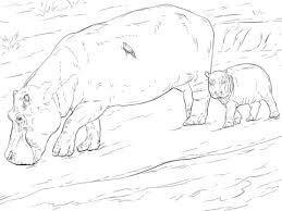 Click To See Printable Version Of Mother And Young Hippo Coloring Page