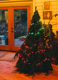 Types Of Christmas Trees With Sparse Branches by The No Kill Christmas Tree Offbeat Home U0026 Life
