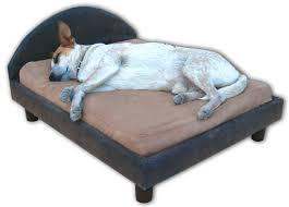 Unchewable Dog Bed by Wondrous Oversized Dog Bed 57 Big Dog Beds Amazon Dog Furniture