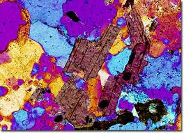 Molecular Expressions Microscopy Primer Specialized Microscopy