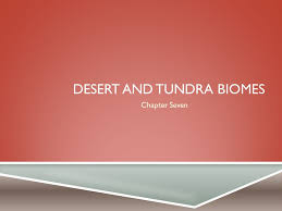 Earth Floor Biomes Desert by Desert And Tundra Biomes Ppt Online Download