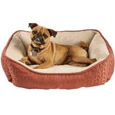 Petco Dog Beds by Local Petco Harmony Furniture Sales Find U0026save