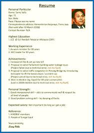 Examples Usa Resume Format