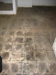 Covering Asbestos Floor Tiles Basement by O Town Diary Asbestos Abatement Or Why Our House Smells So Bad