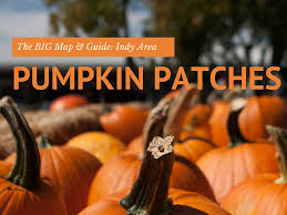 Pumpkin Farms In West Michigan by 2017 Indianapolis Area Best Pumpkin Patches And Farms Discount