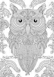 Owl Coloring Pages For Adult Download