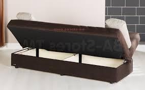 Futon Sofa Bed Big Lots by Sofas Center Sofa Big Lots Best Sleeperfas Gold Sparrow Aspen