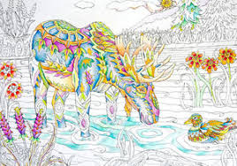 Detail Of Pamela Smarts Magnificent Moose From Her Color Me Your Way