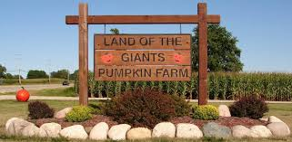 Southeast Wisconsin Pumpkin Patches by Land Of The Giants Pumpkin Farm Home